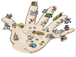 العدوى والعلاج الكيميائى